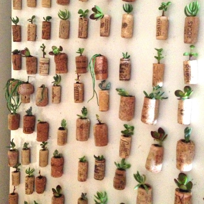 Cork Magnets : LucidDesign